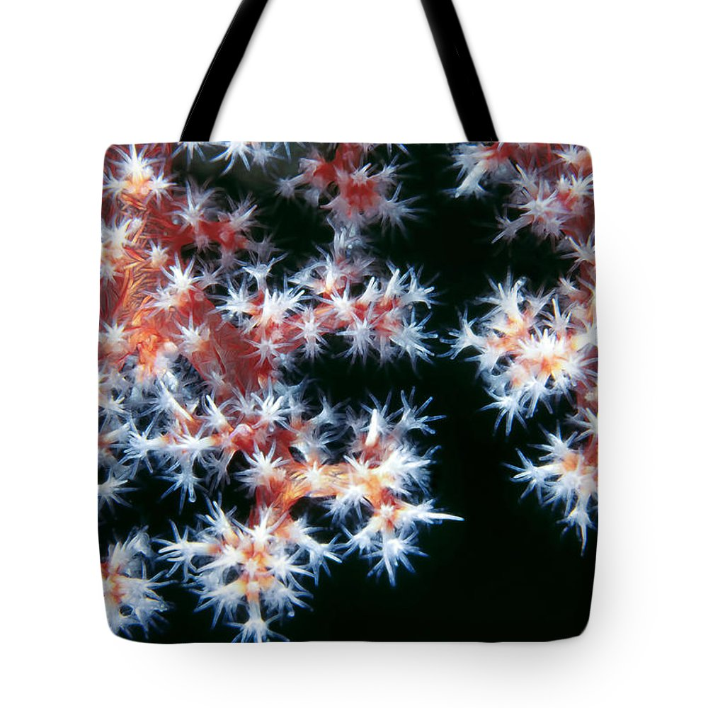 Micronesia Tote Bag featuring the photograph Soft Corals 5 by Dawn Eshelman