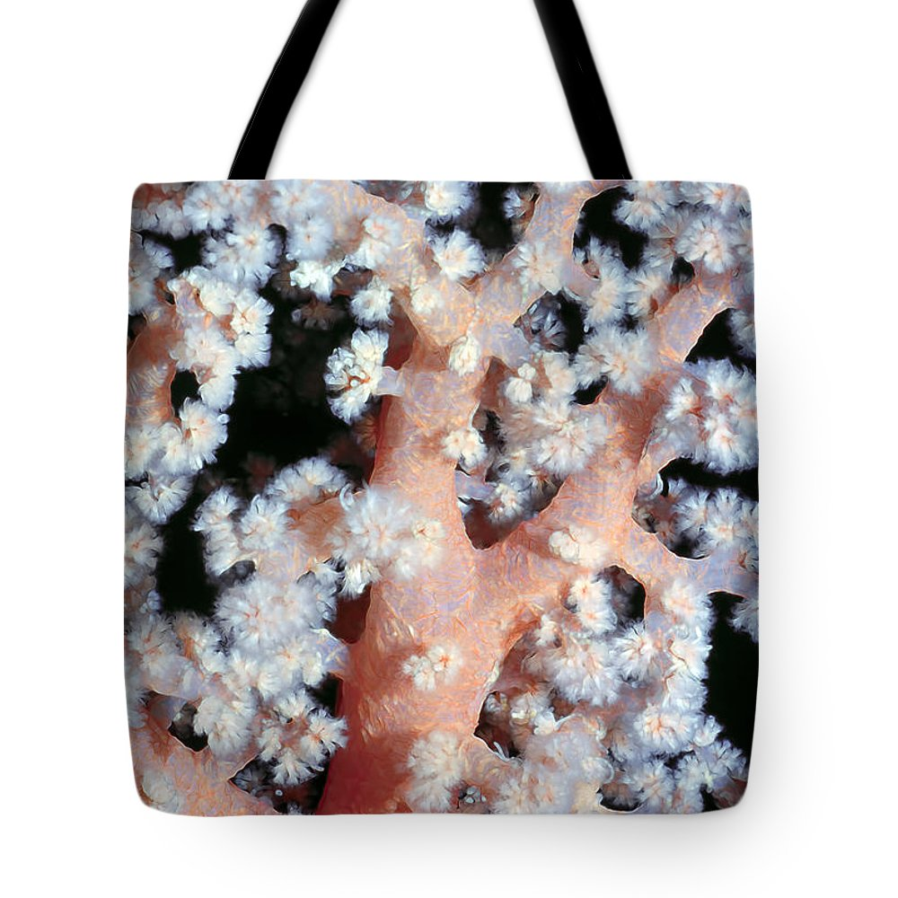 Micronesia Tote Bag featuring the photograph Soft Corals 6 by Dawn Eshelman