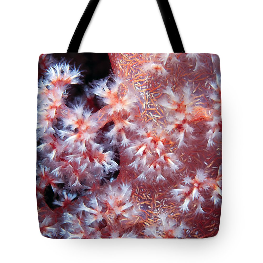 Micronesia Tote Bag featuring the photograph Soft Corals 7 by Dawn Eshelman