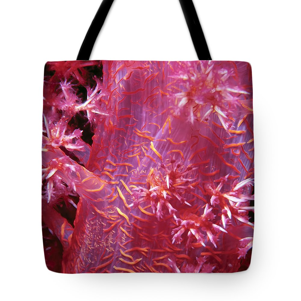 Micronesia Tote Bag featuring the photograph Soft Corals 8 by Dawn Eshelman