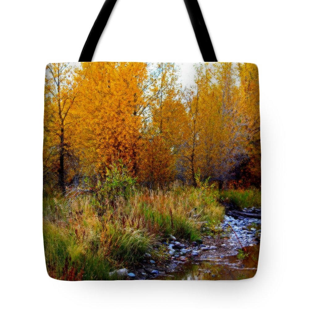 Fall Tote Bag featuring the photograph Soft Forest Colors by Lynn Sprowl