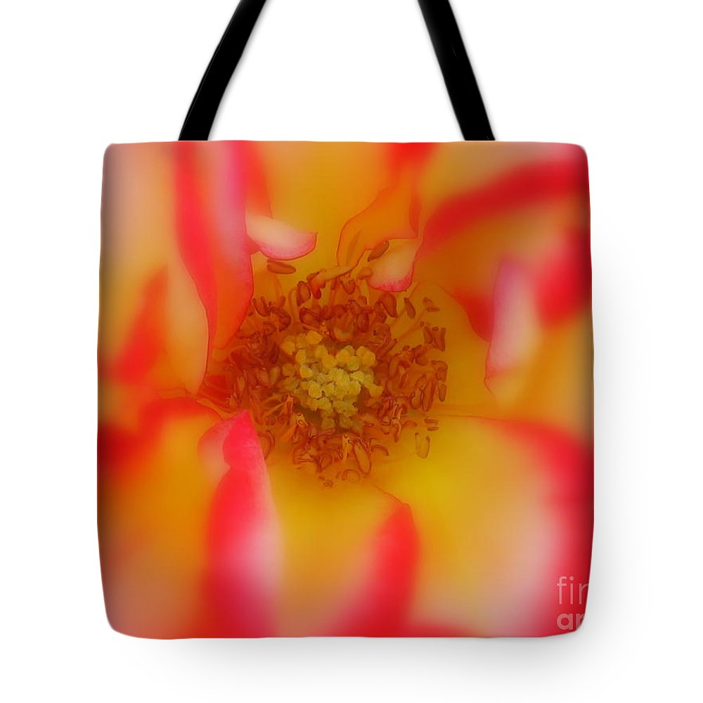Soft Rose Tote Bag featuring the photograph Soft Rose by Patti Whitten