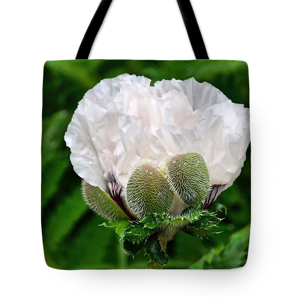 Poppy Tote Bag featuring the photograph Soft White Poppy by Susie Peek