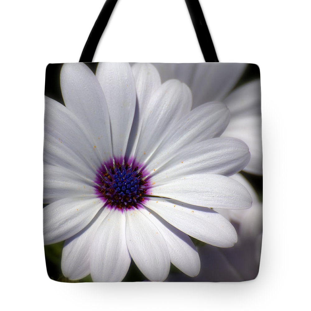 Softee Tote Bag featuring the photograph Softee by Ed Smith