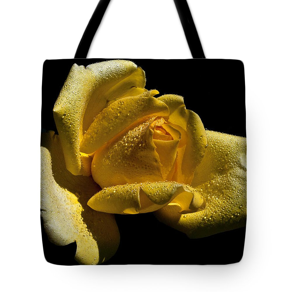 Rose Tote Bag featuring the photograph Softly by Doug Norkum