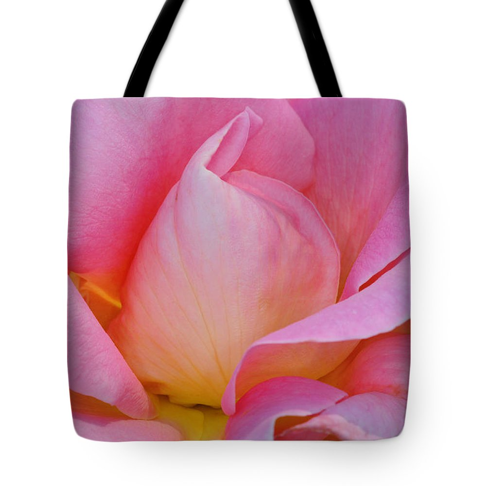 Pink Rose Tote Bag featuring the photograph Softness In Pink by Dave Mills