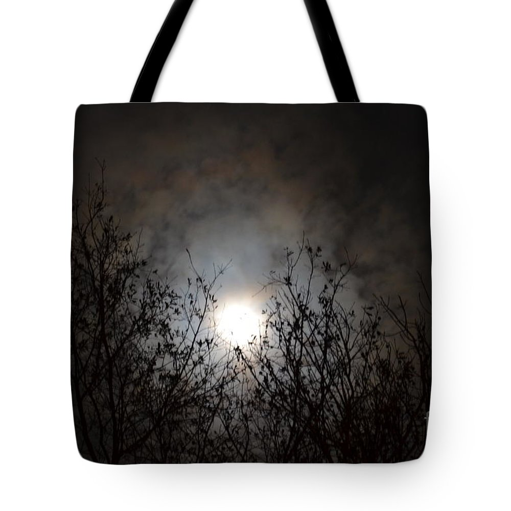 Solemn Winter's Moonlight Tote Bag featuring the photograph Solemn Winter's Moonlight by Maria Urso