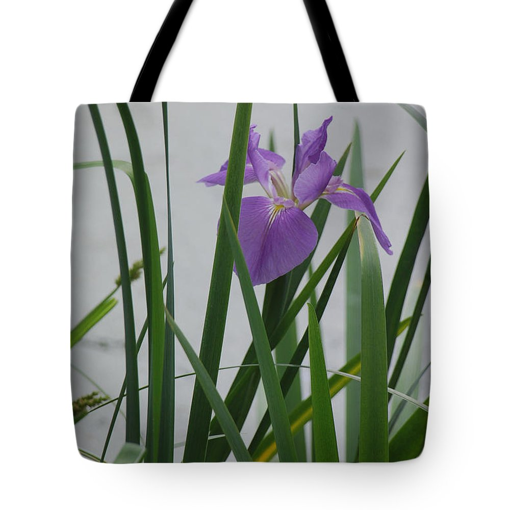 Iris Tote Bag featuring the photograph Solo Iris by Suzanne Gaff