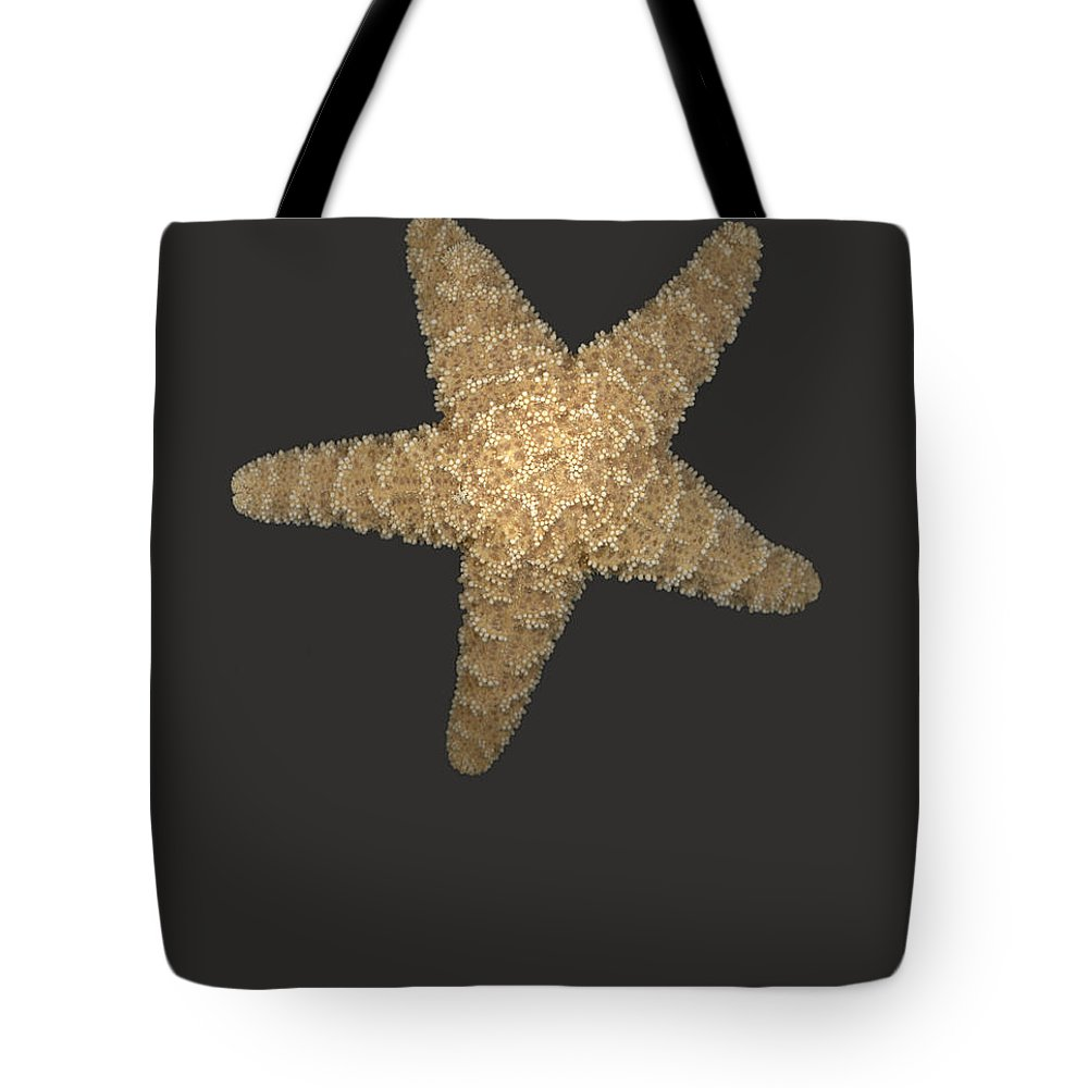 Starfish Tote Bag featuring the photograph Solo Starfish I by Suzanne Gaff