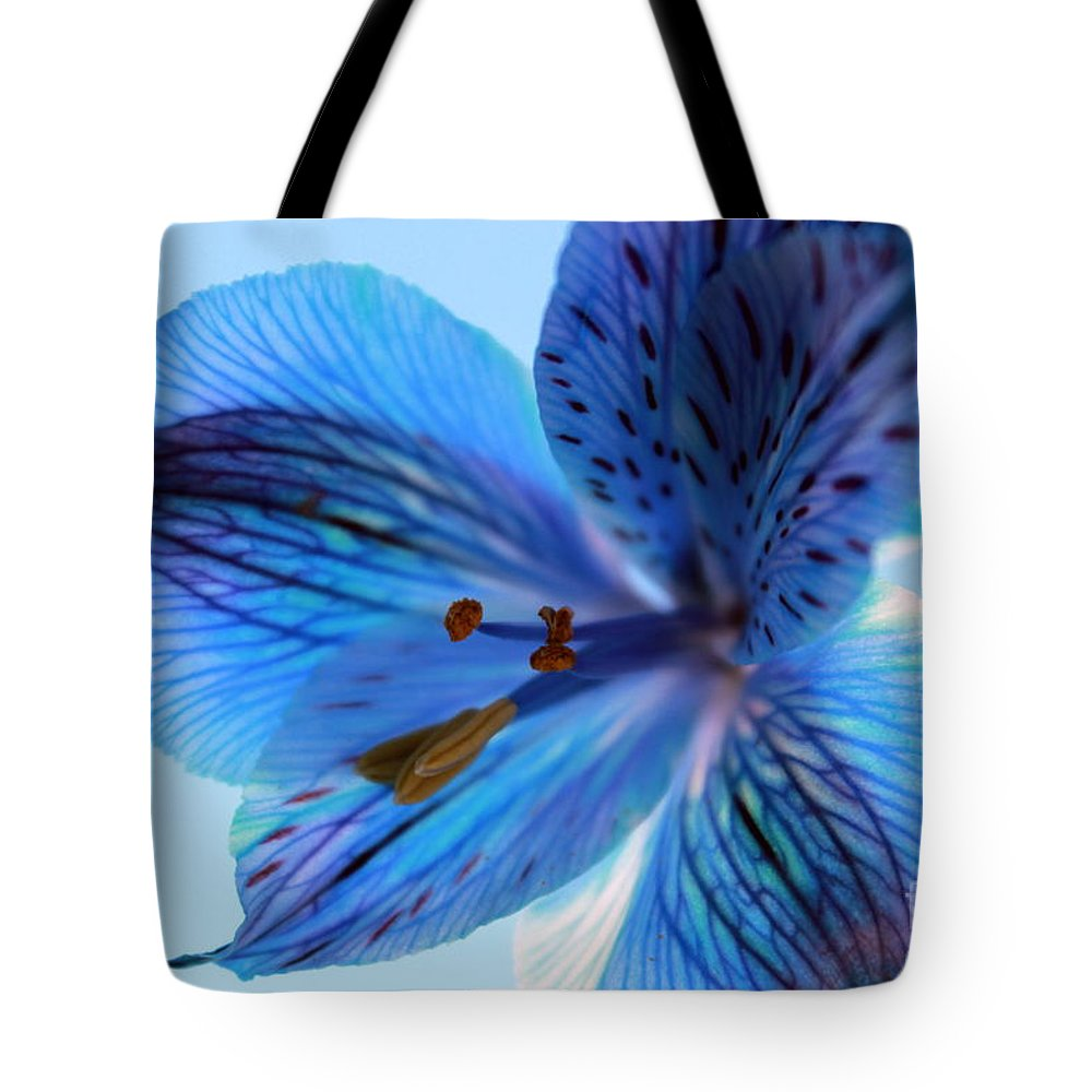 Amaryllis Tote Bag featuring the photograph Someday by Krissy Katsimbras