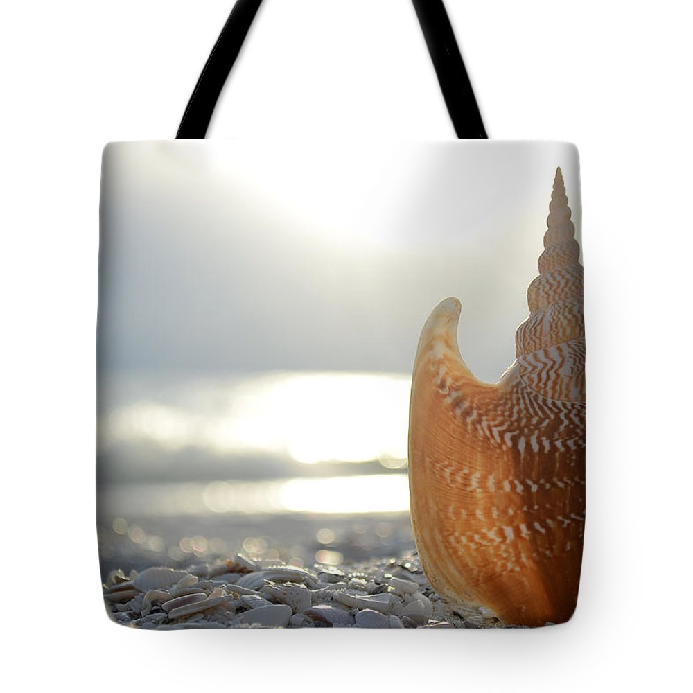 Seashell Tote Bag featuring the photograph Something Beautiful Remains by Melanie Moraga