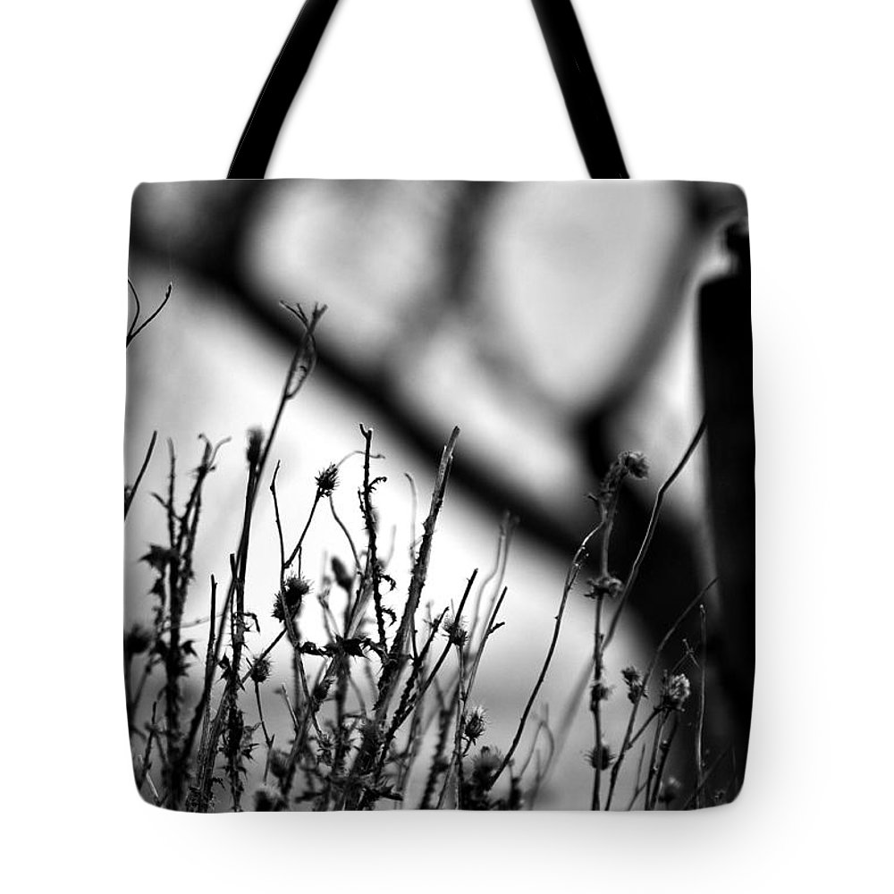 Something Wicked This Way Comes Tote Bags