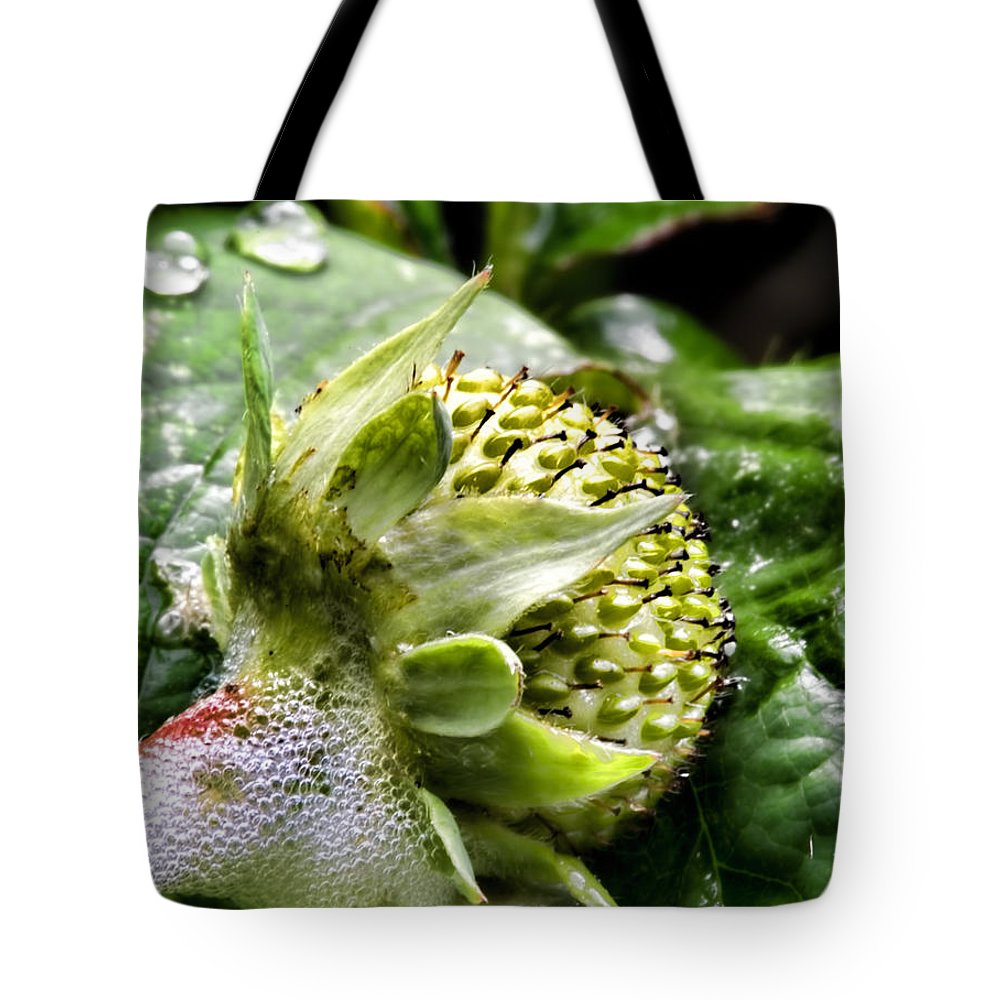 Photo Tote Bag featuring the photograph Soon 0 by Leif Sohlman