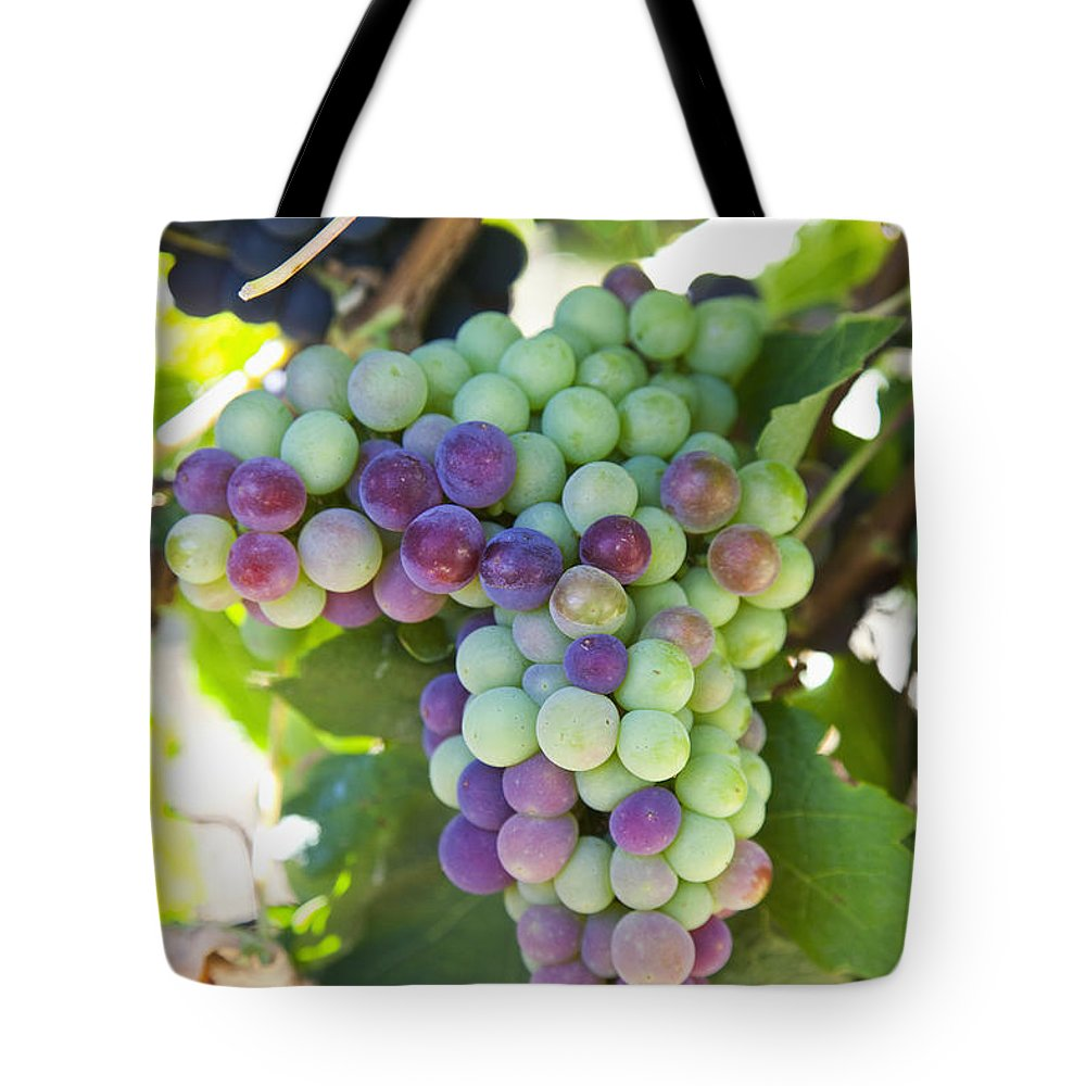 Acheson Tote Bag featuring the photograph South Africa, Scenes At Constantia by Jenny Acheson