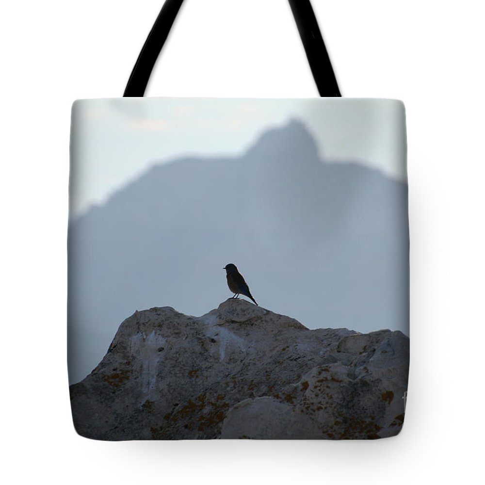 Arizona Tote Bag featuring the photograph South Rim Morning by Susan Herber