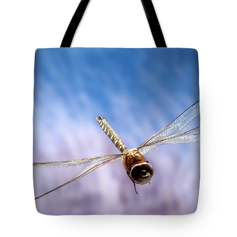 Aeshna Cyanea Tote Bag featuring the photograph Southern Hawker Dragonfly by Michael Durham