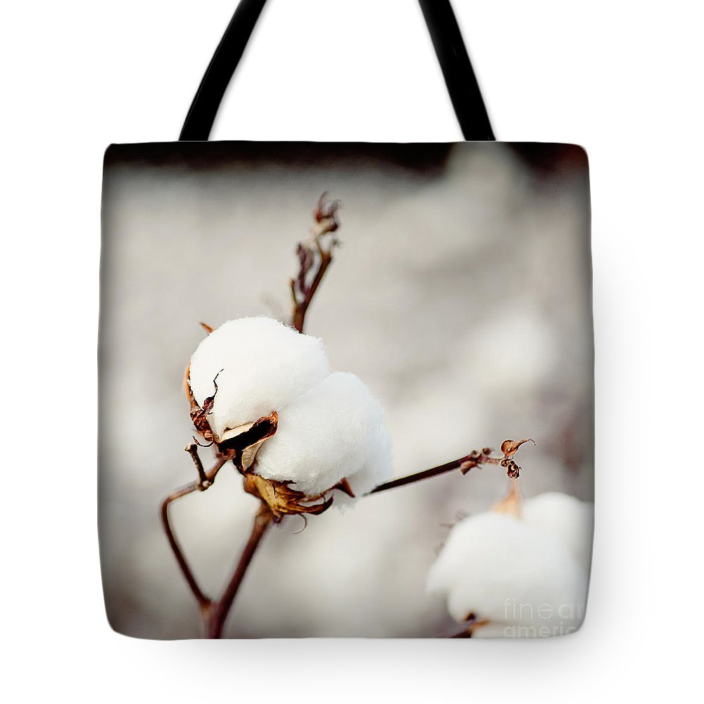 Southern Tote Bag featuring the photograph Southern Snow by Erin Johnson