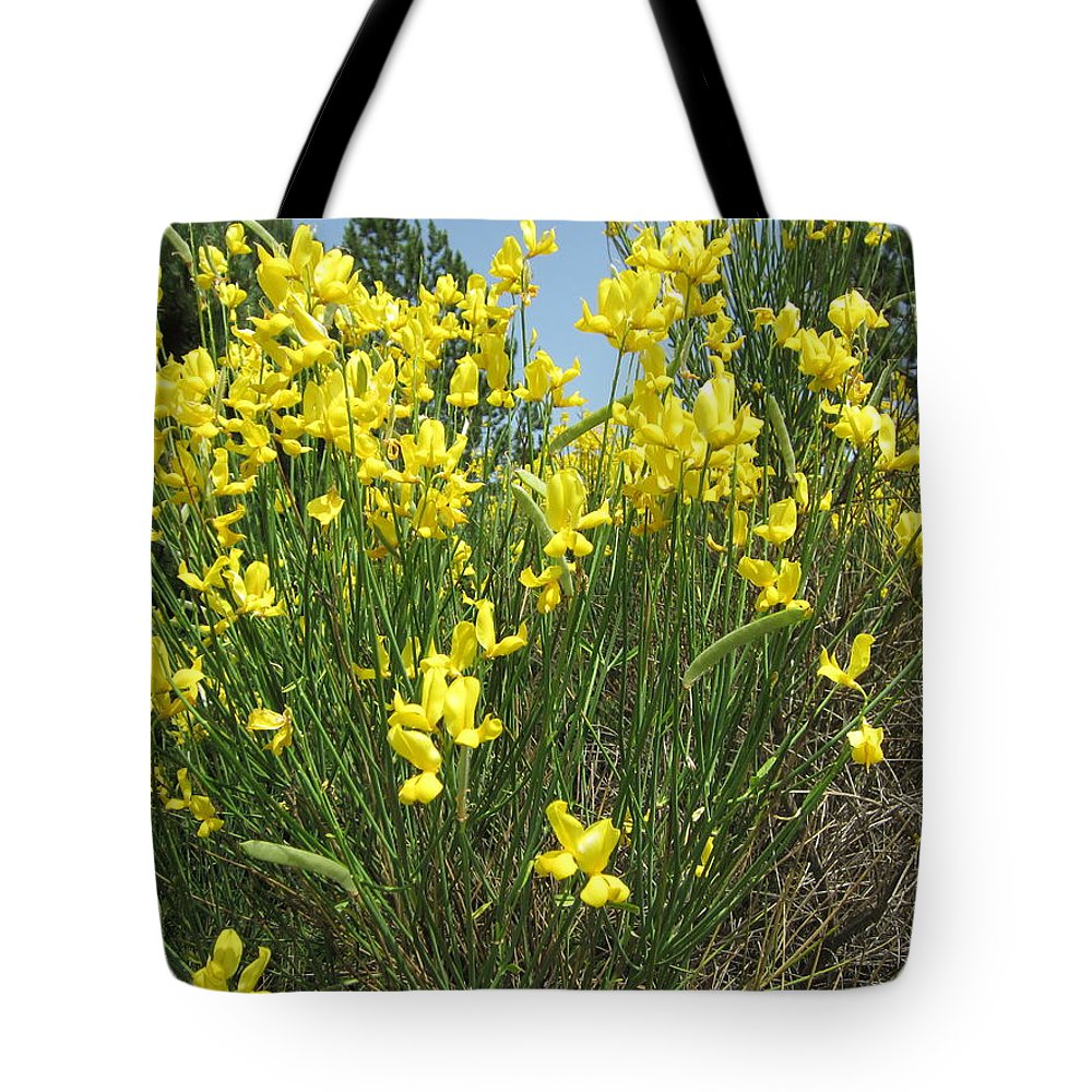 Yellow Tote Bag featuring the photograph Spanish Broom 1 by Pema Hou