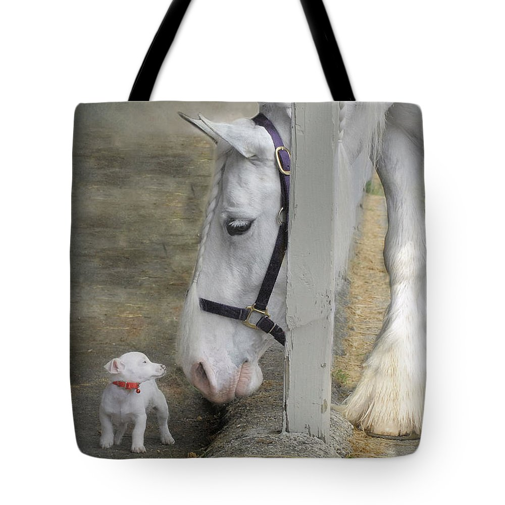 Horses Tote Bag featuring the photograph Sparky and Sterling Silvia by Fran J Scott