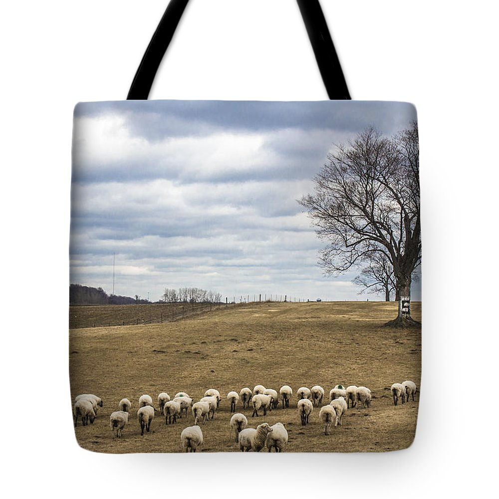 Michigan State University Tote Bag featuring the photograph Spartan Tree by John McGraw