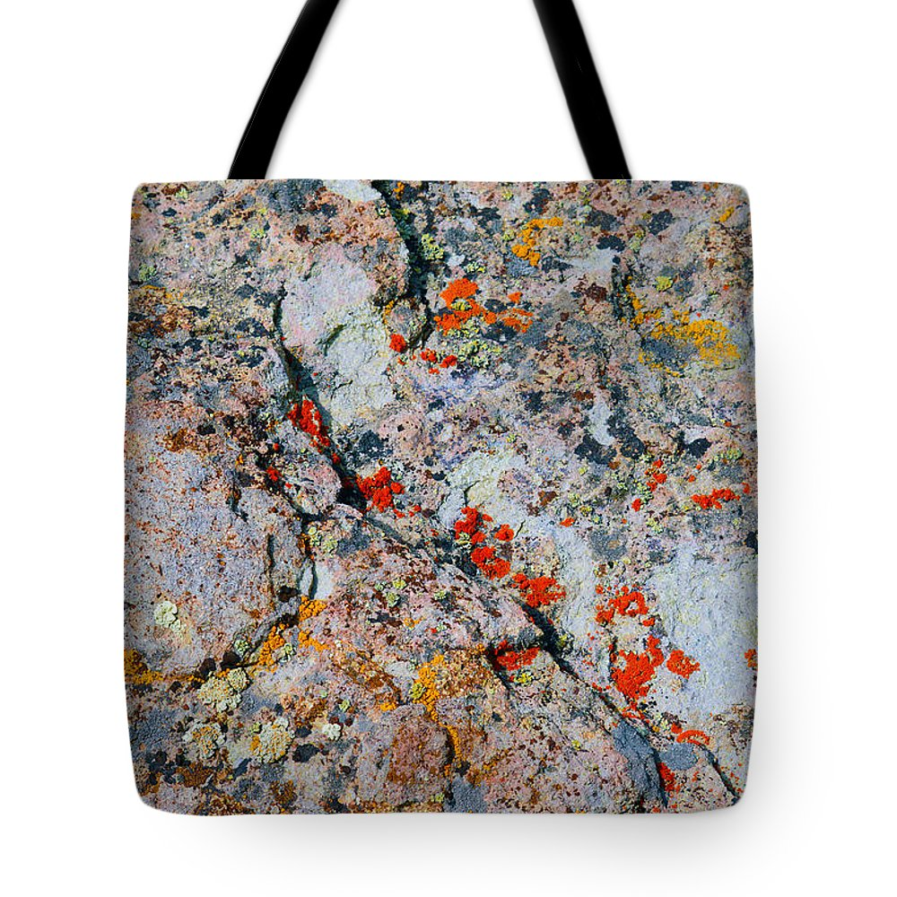 Lichen Tote Bag featuring the photograph Specks 3 by Brent Dolliver