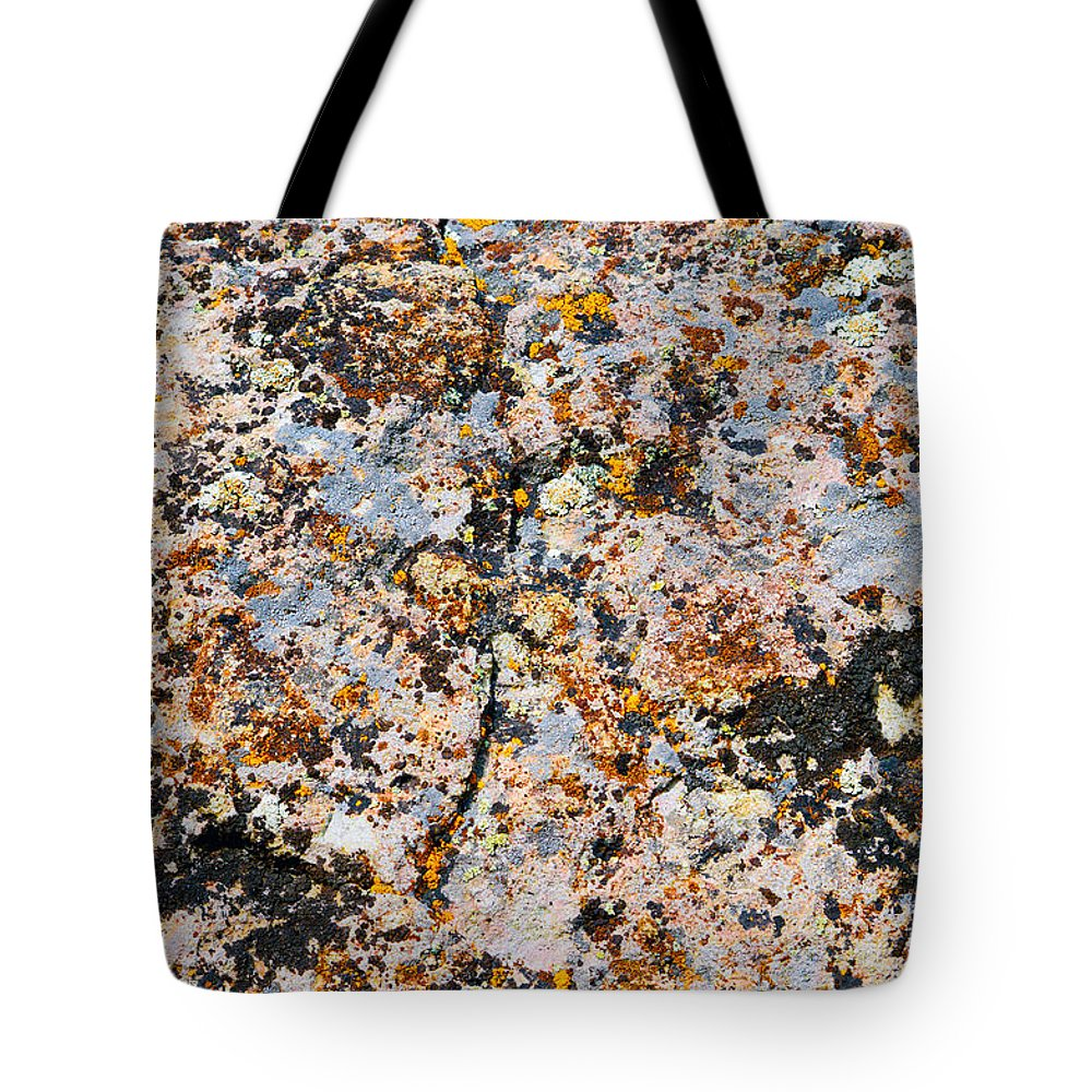 Lichen Tote Bag featuring the photograph Specks 4 by Brent Dolliver