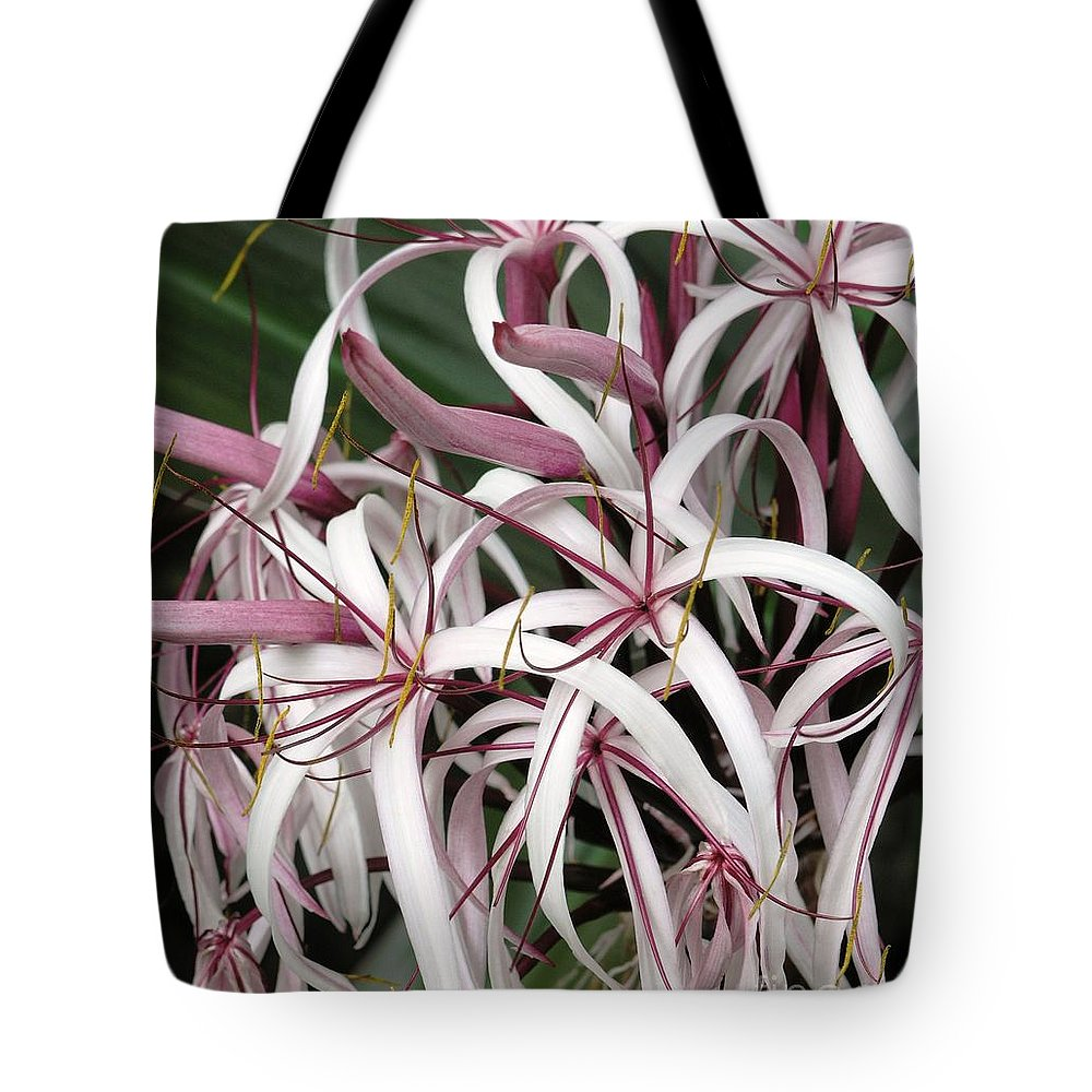 Lily Tote Bag featuring the photograph Spider Lily by Mary Deal