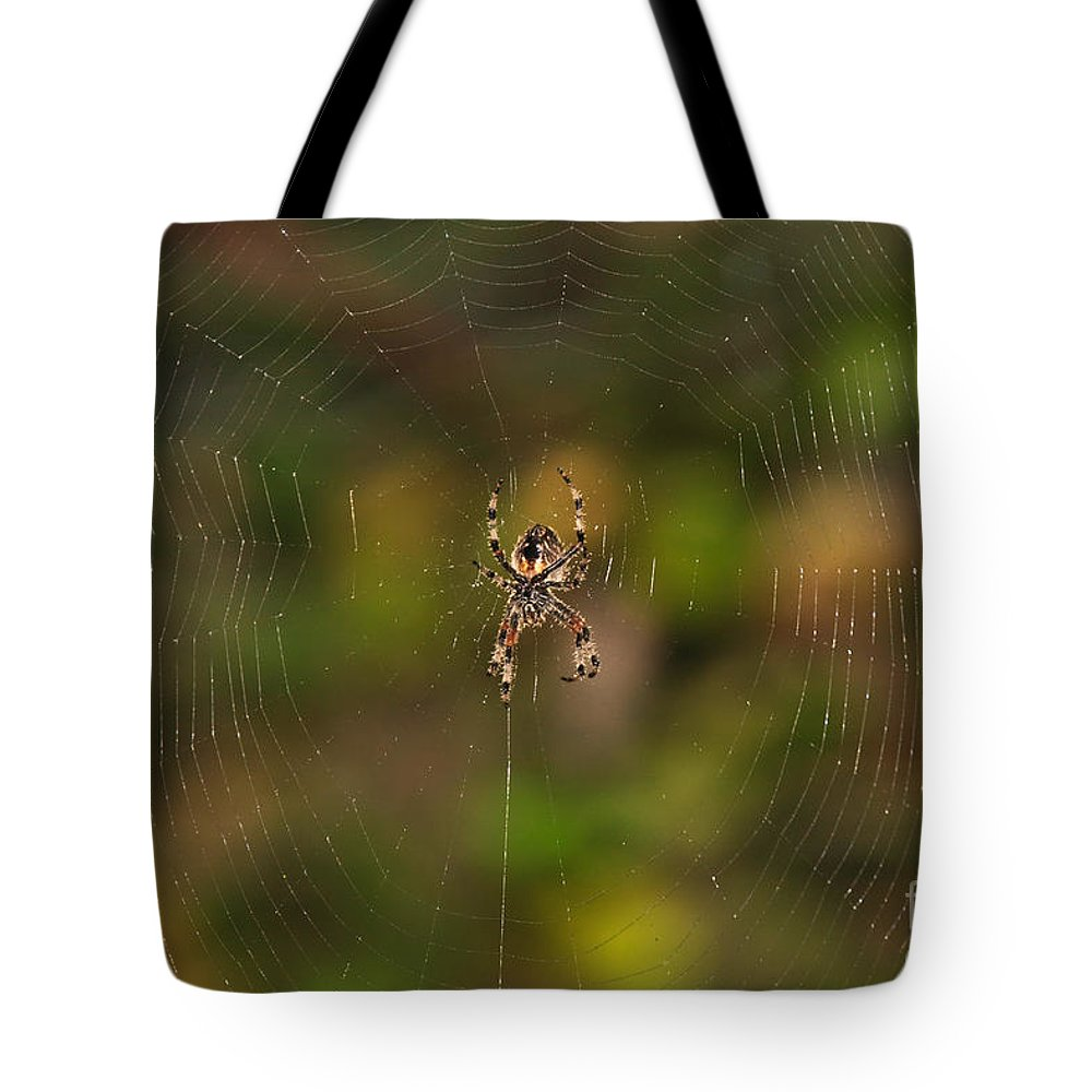 Garden Tote Bag featuring the photograph Spider Web by Beth Sargent