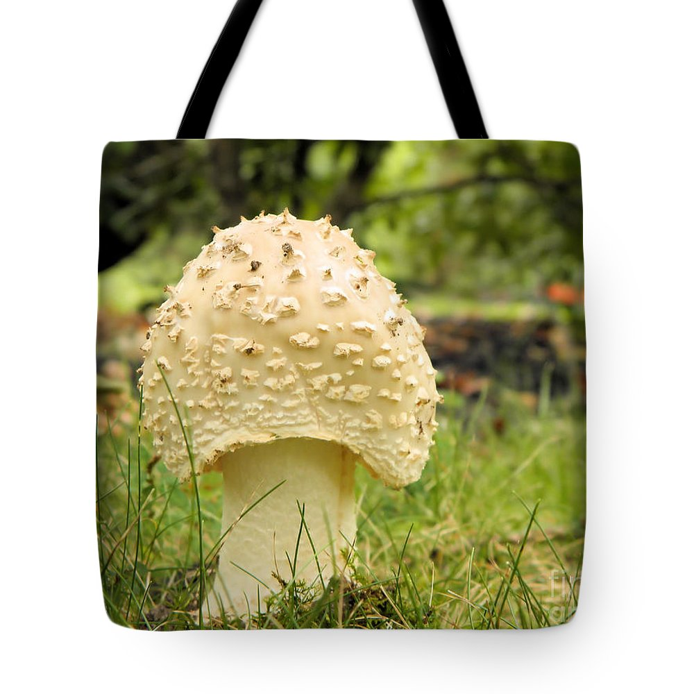 Spike Tote Bag featuring the photograph Spiked Mushrooms by Sharon Woerner