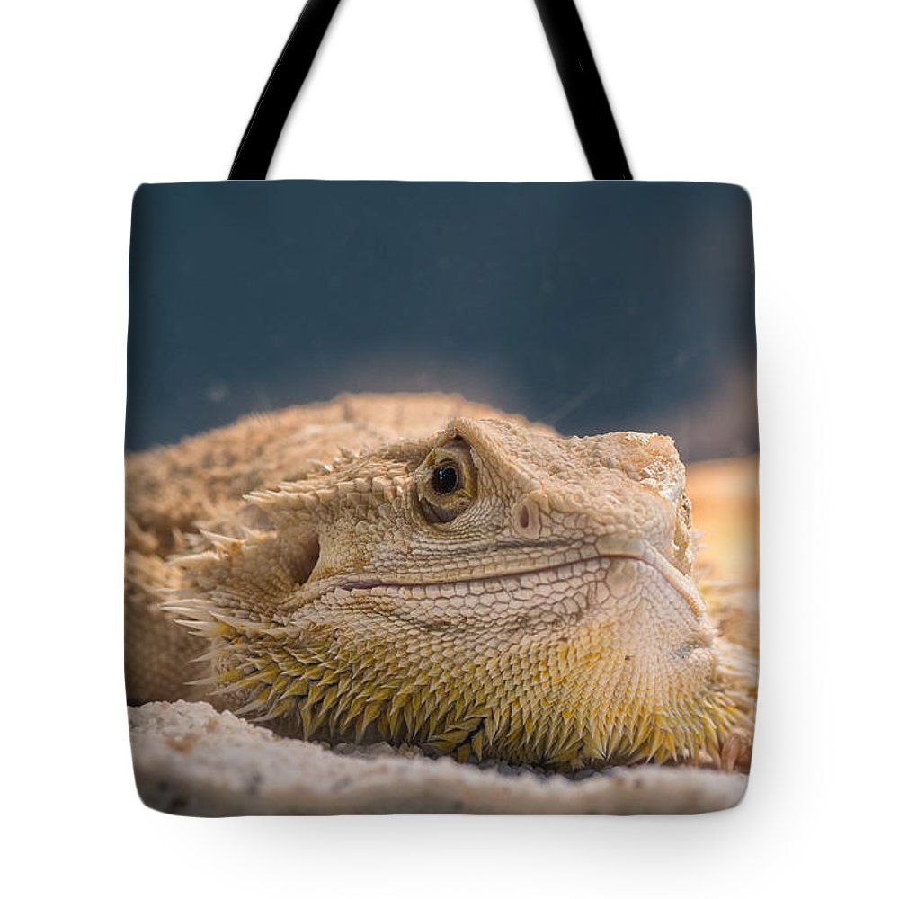 Macro Tote Bag featuring the photograph Spiked One by Bruno Rosa