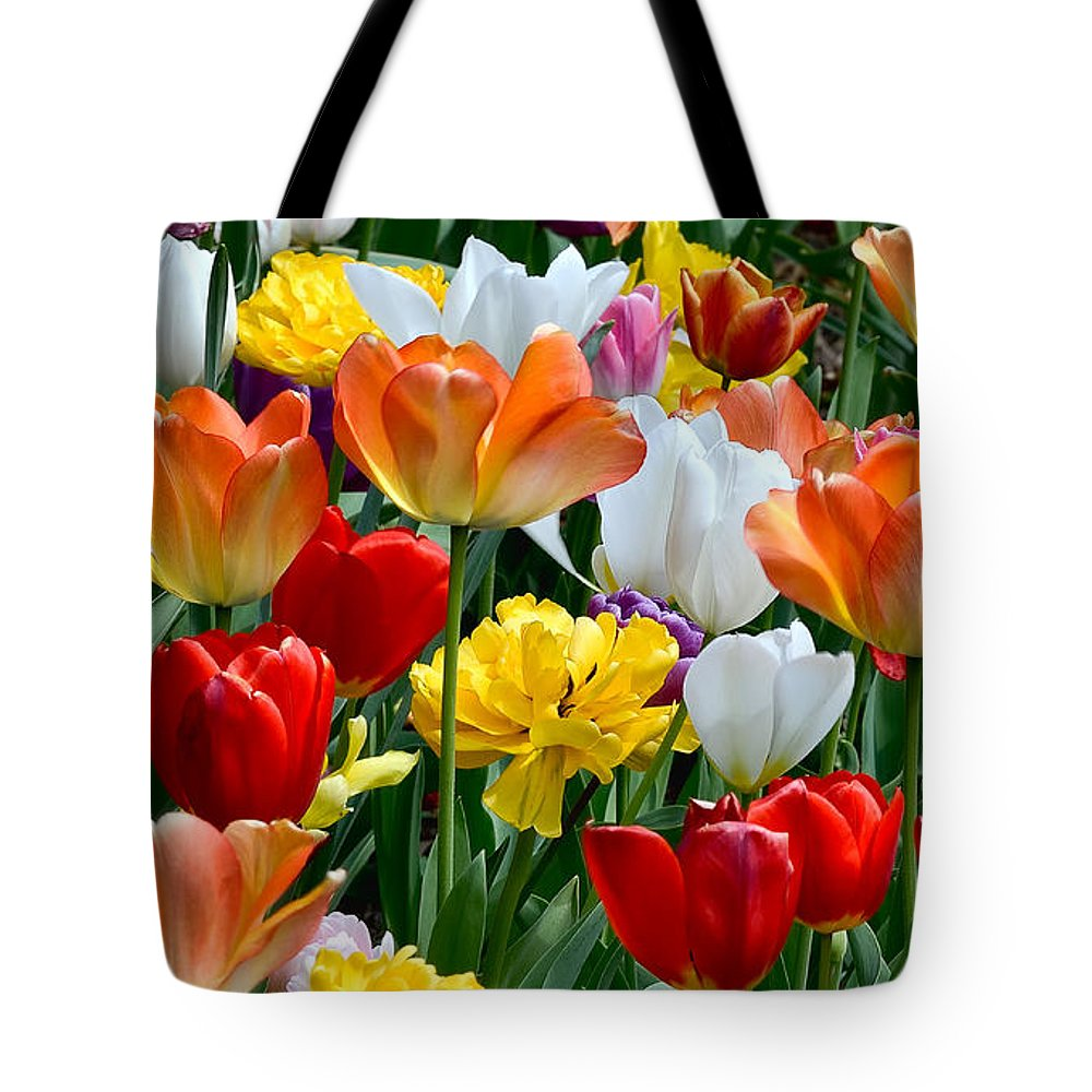 Tulips Tote Bag featuring the photograph Splash Of Spring by William Jobes