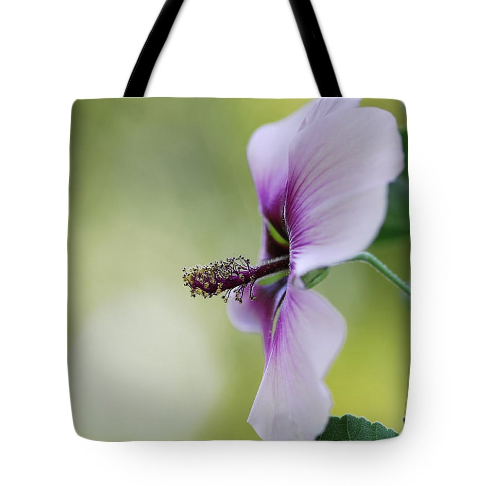 Flower Tote Bag featuring the photograph Splendor by Donna Blackhall
