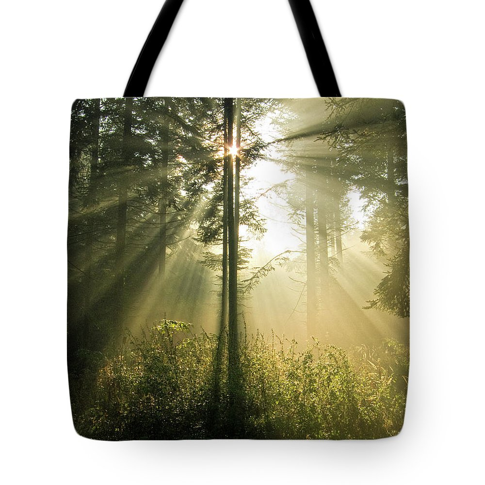Nature Tote Bag featuring the photograph Splendour by Daniel Csoka