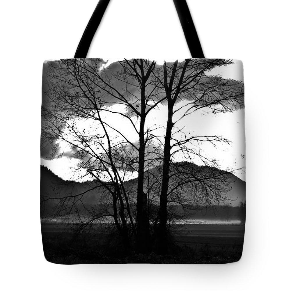 Spooky Tote Bag featuring the photograph Spooky Field by Redjule Photography