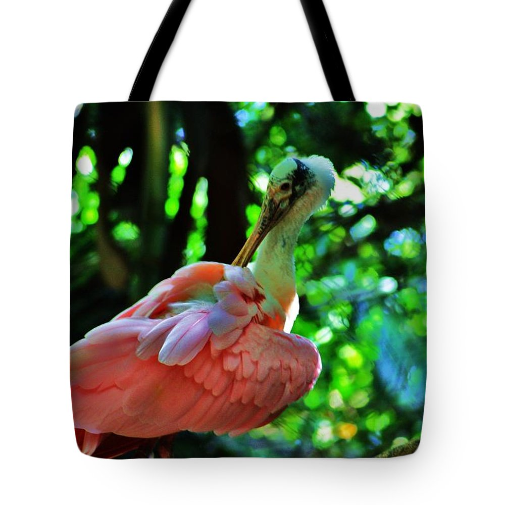 Spoonbill Tote Bag featuring the photograph Spoonbill by Chuck Hicks