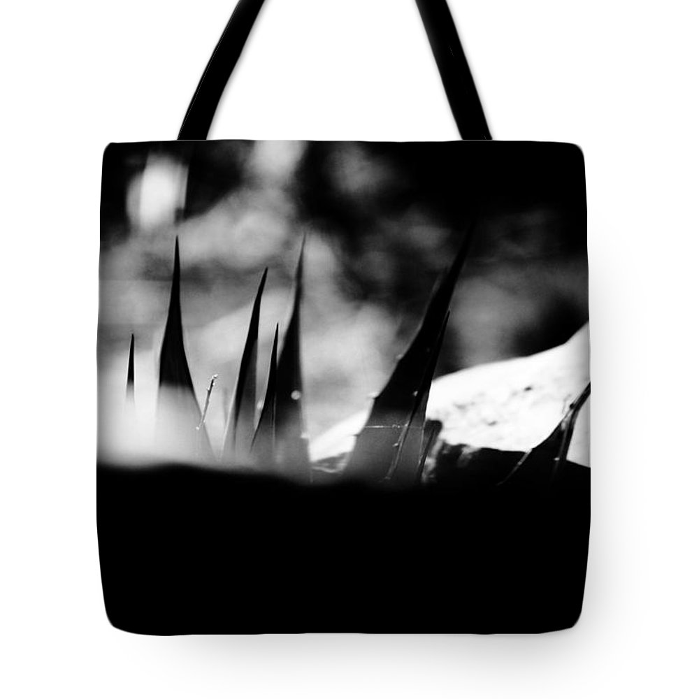 Black Tote Bag featuring the photograph Spotted by Jessica Shelton