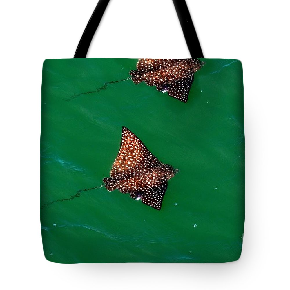 Spotted Eagle Ray Tote Bag featuring the photograph Spotted Rays by Davids Digits