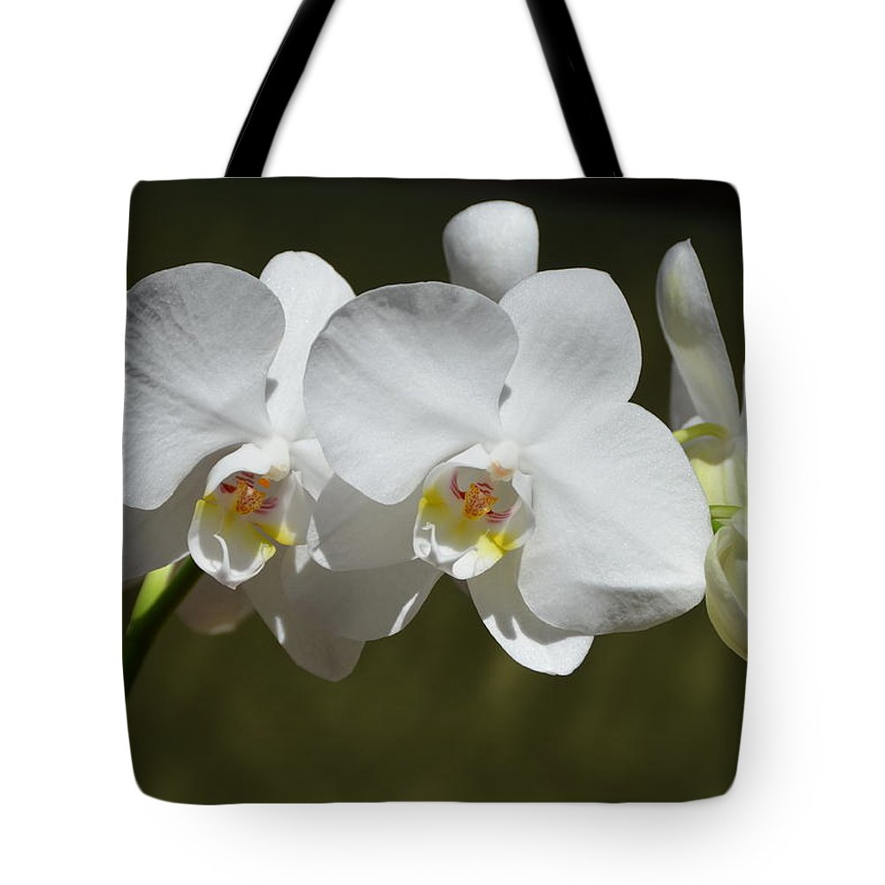 Orchid Tote Bag featuring the photograph Spray Of Beautiful White Orchids by Carla Parris