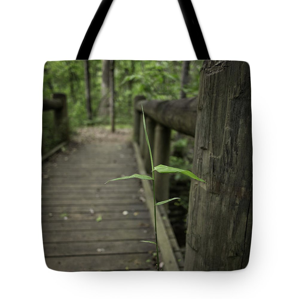 Addo Lake Tote Bag featuring the photograph Spring And All by John Hesley