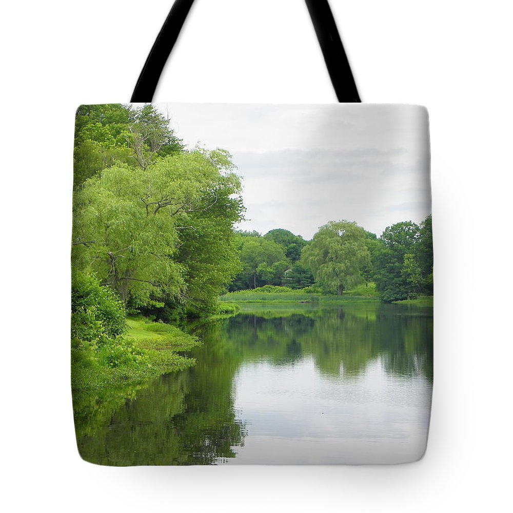 Spring Tote Bag featuring the photograph Spring At Kings Pond by Georgia Hamlin