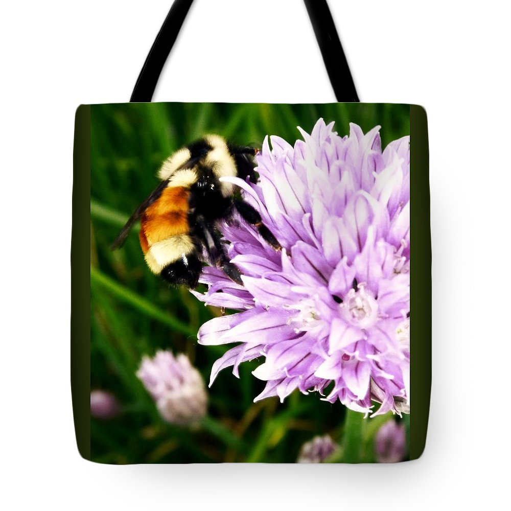 Bee Tote Bag featuring the photograph Spring Bee by Gigi Dequanne