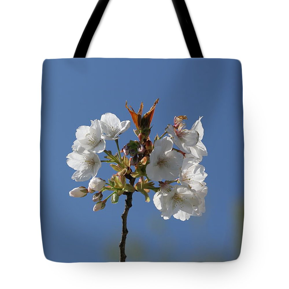 Karen Silvestri Tote Bag featuring the photograph Spring Bloom by Karen Silvestri
