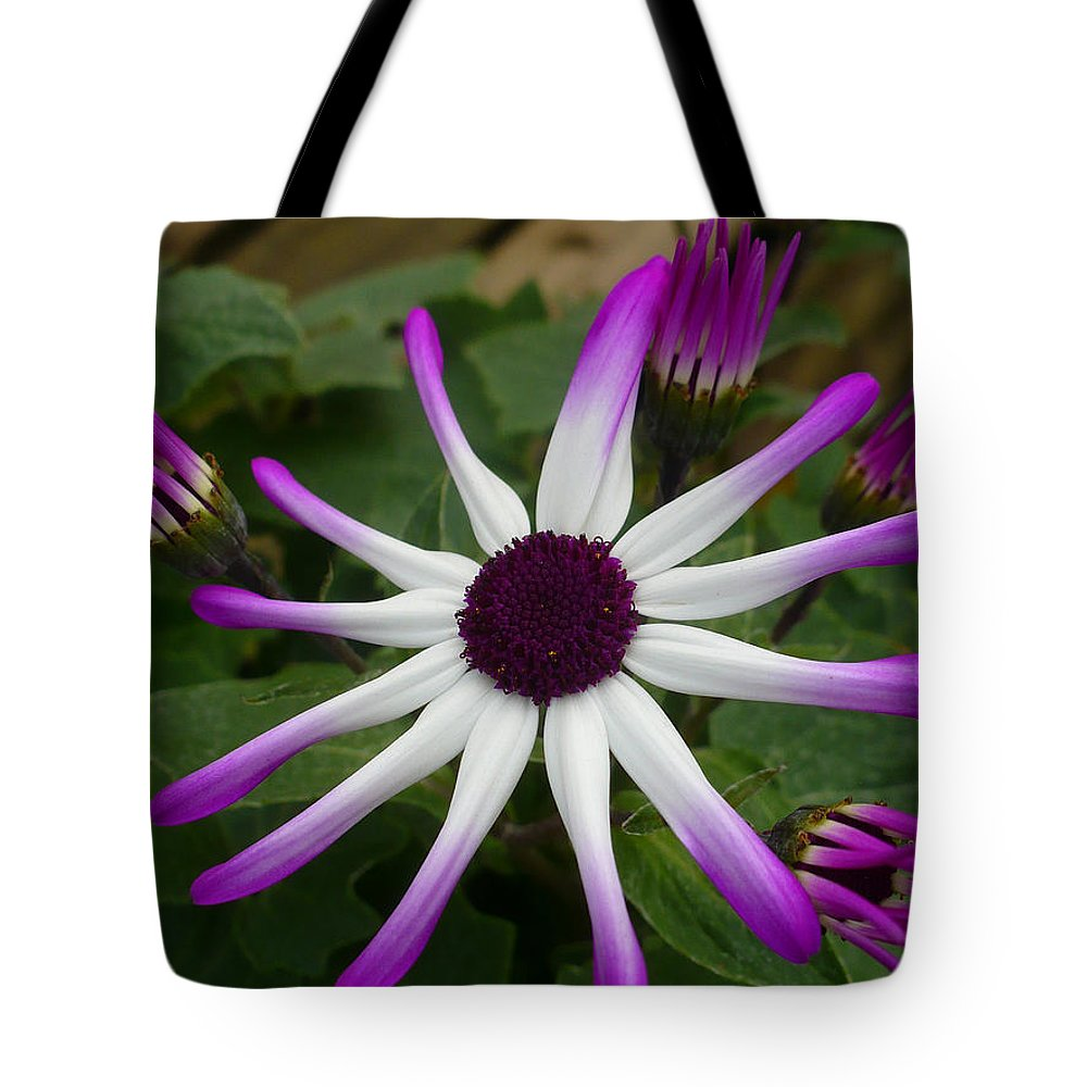 Floral Tote Bag featuring the photograph Spring Blooms Of 2013 E by Nicki Bennett