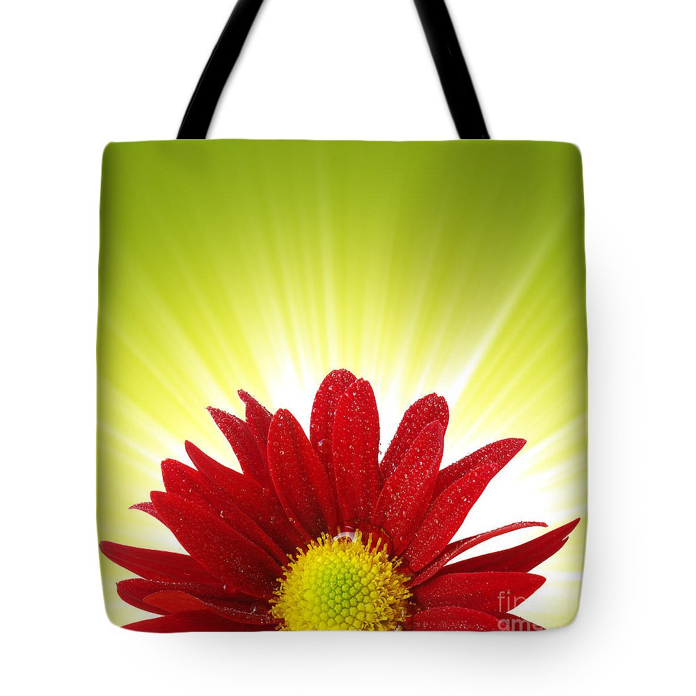 Abloom Tote Bag featuring the photograph Spring Blossom by Carlos Caetano