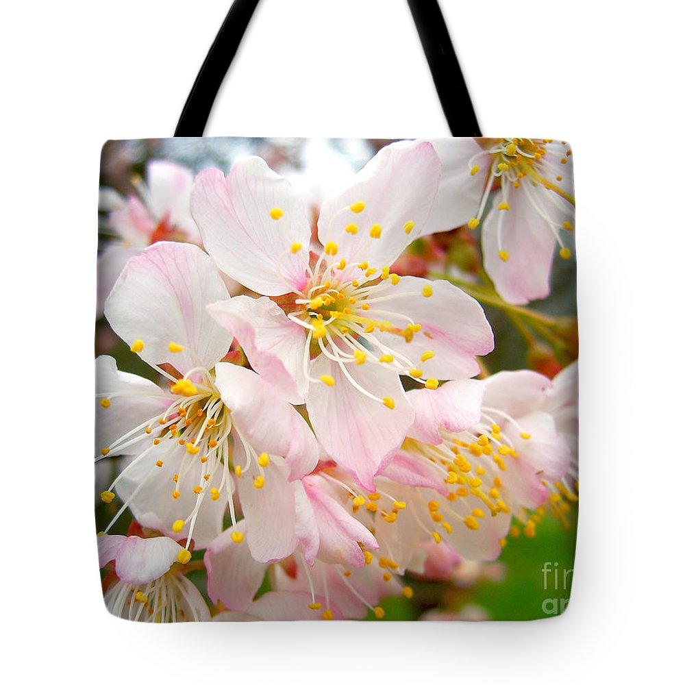 Pear Blossom Tote Bag featuring the photograph Spring Blossom by Nina Ficur Feenan