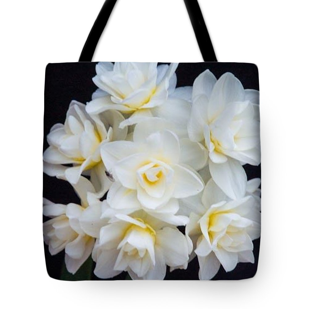 Spring Tote Bag featuring the photograph Spring Cheer Daffodil 2 by Douglas Barnett