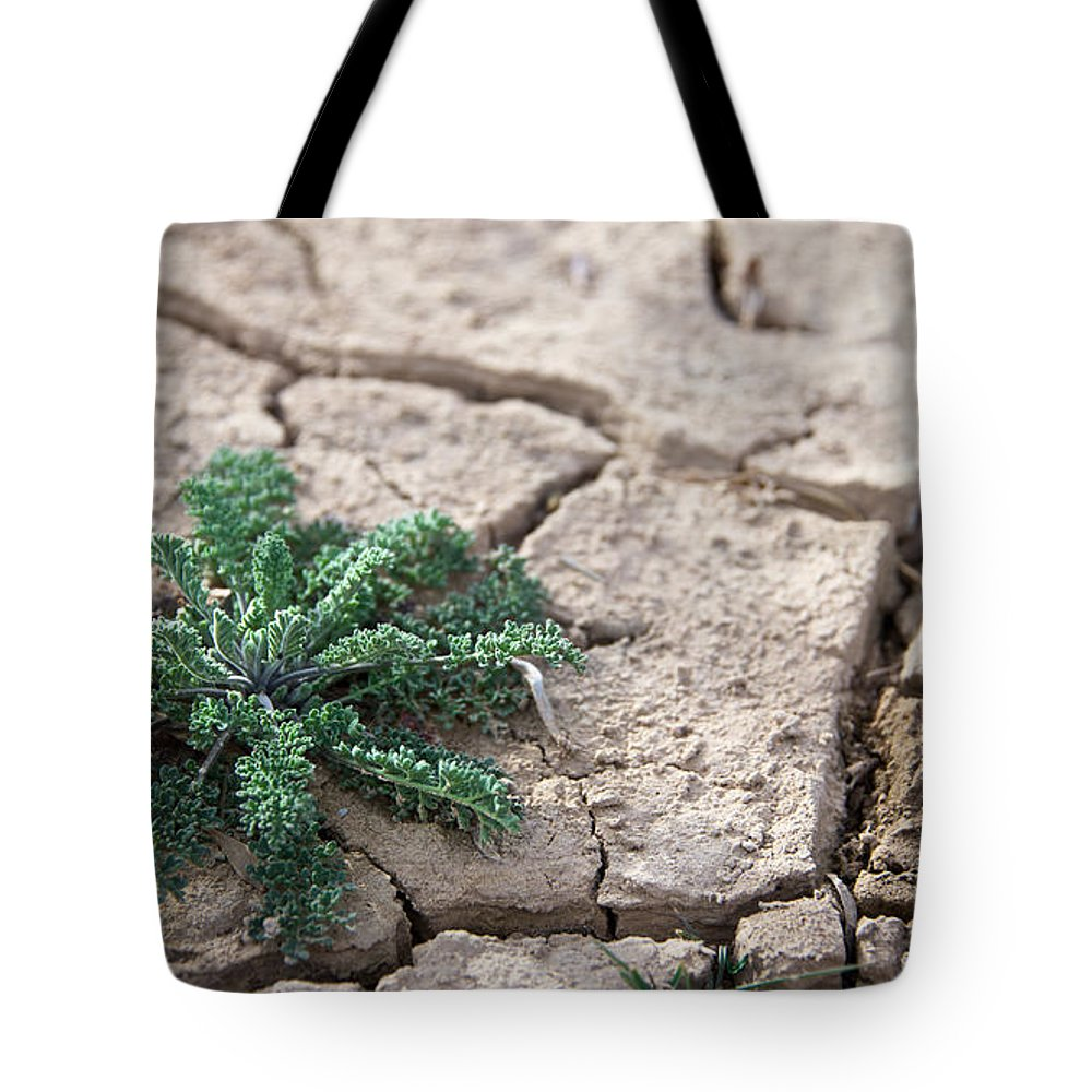 Landscapes Tote Bag featuring the photograph Breaking Of The Drought by Mary Lee Dereske