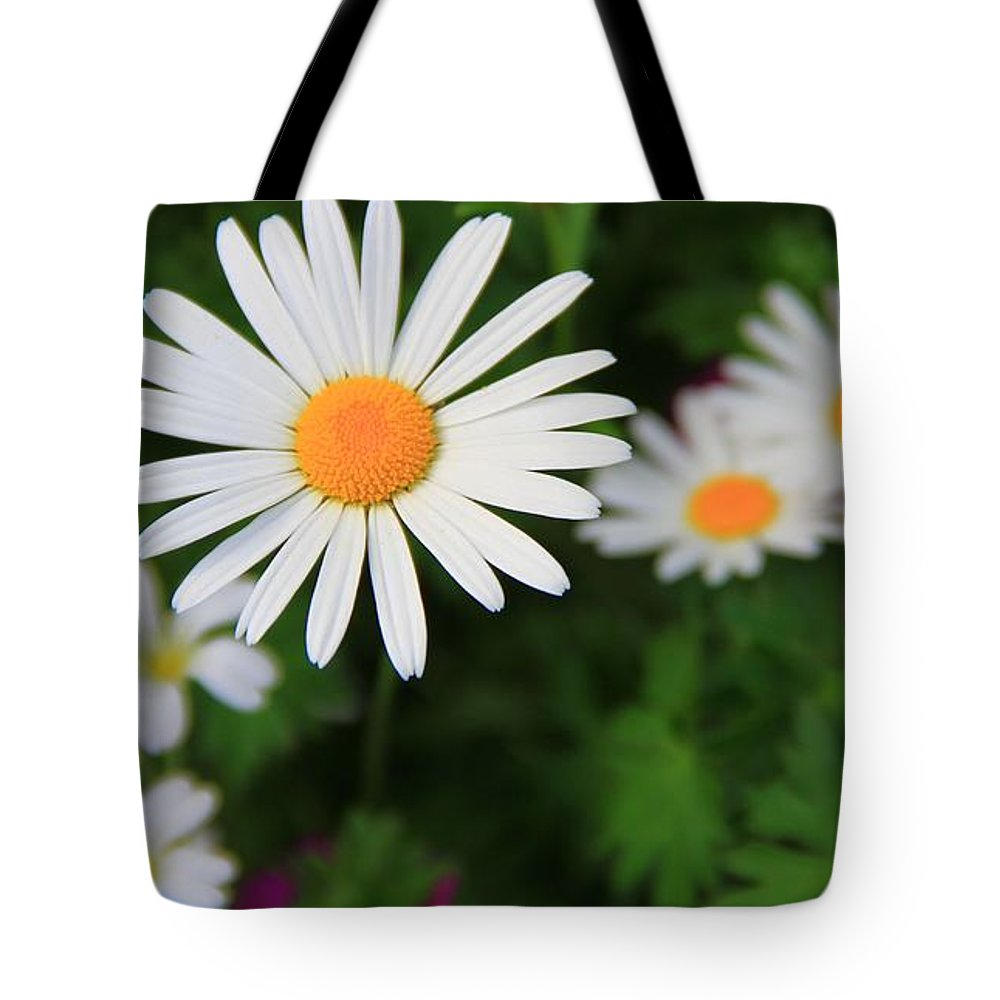 Spring Flowers Tote Bag featuring the photograph Spring Flowers by Dan Sproul