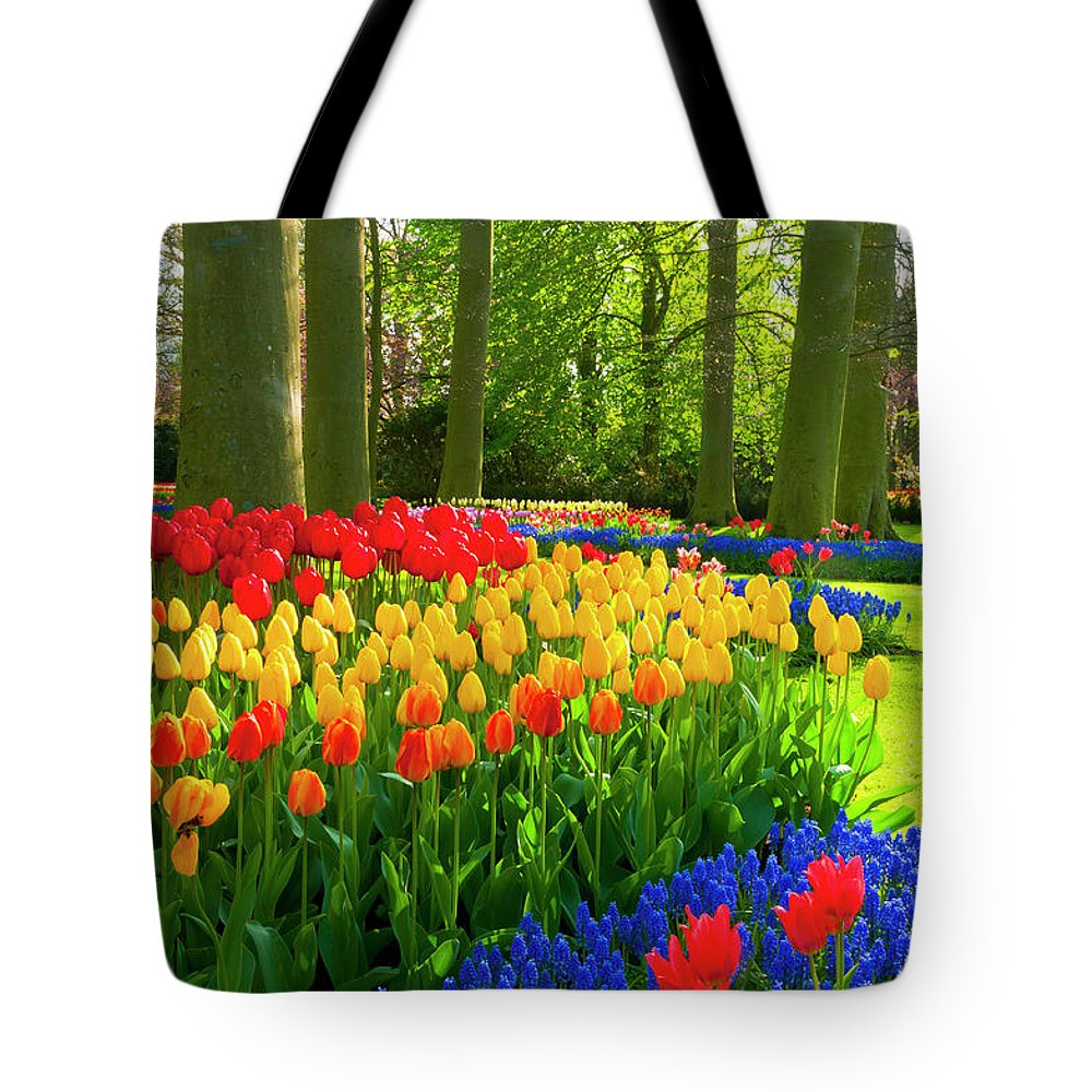 Flowerbed Tote Bag featuring the photograph Spring Flowers In A Park by Jacobh
