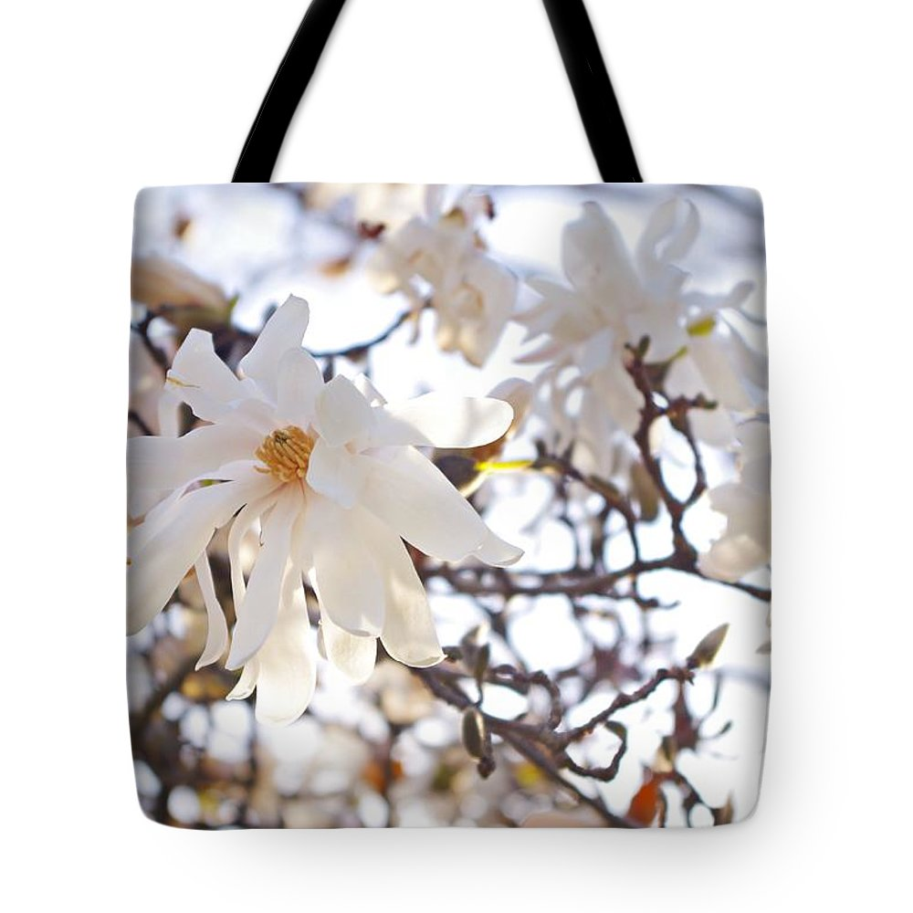 Magnolia Stellata Tote Bag featuring the photograph Spring Flowers by Sharon Popek